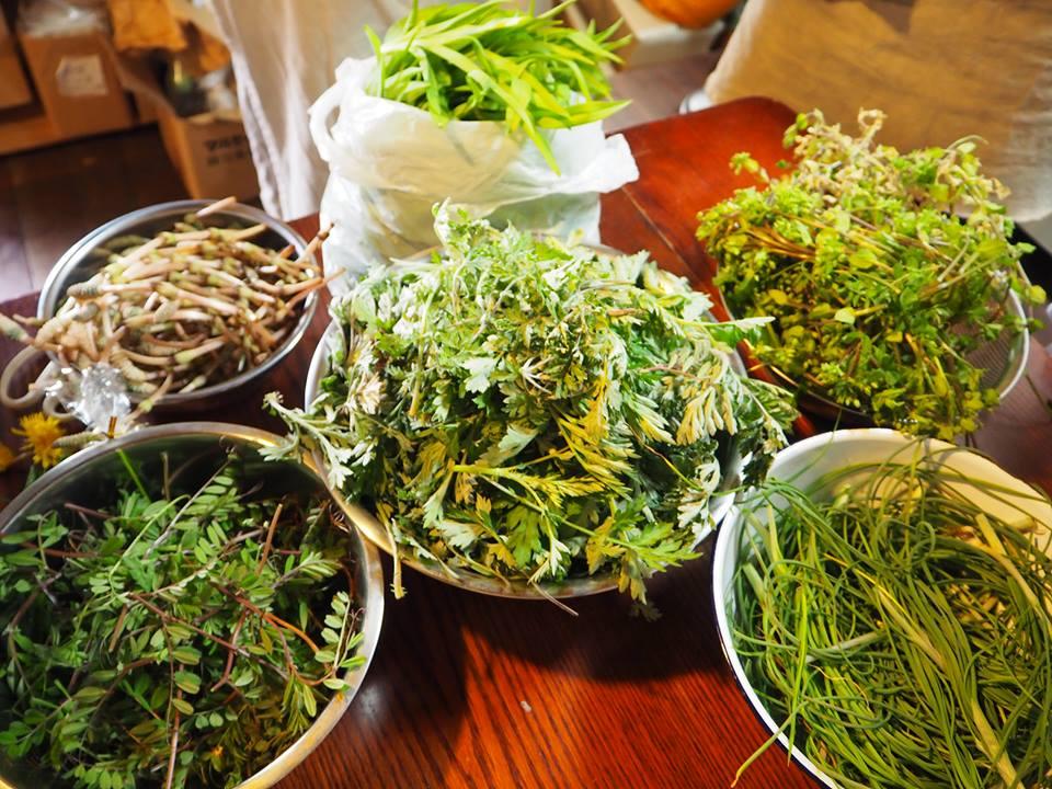 17野草料理教室
