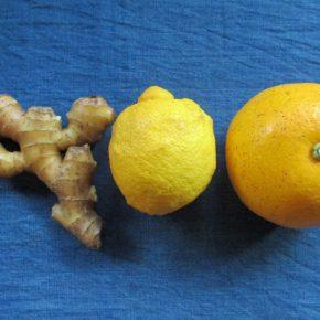 ハッサク、レモン、ショウガ