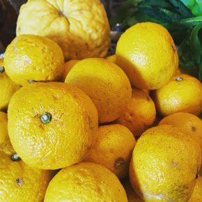 しあわせになる柚子の酵素ジュース講座