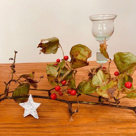 美し山の赤い実木の実 ◉ クリスマスリースづくり